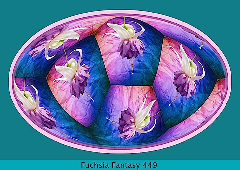 fuchsia-fantasy-449