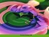 fuchsia-fantasy546